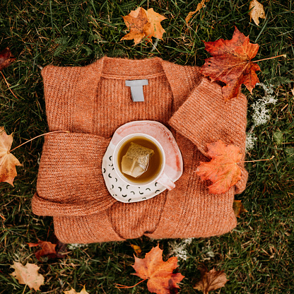 Sweater「Tea and knitted sweater outdoors in autumn from above overhead」:スマホ壁紙(15)
