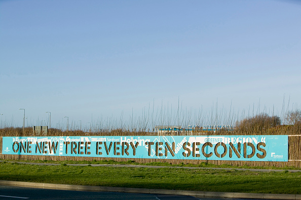 Planting「A sign about planting trees in the North west of England near Liverpool」:写真・画像(17)[壁紙.com]