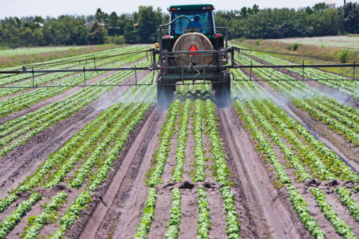 Insecticide「Tractor spraying field, Florida, United States」:スマホ壁紙(12)