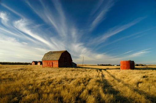 Saskatchewan「sky's Alive!!!」:スマホ壁紙(2)