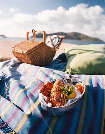 Queensland「Picnic basket and seafood bowl on blanket」:スマホ壁紙(4)
