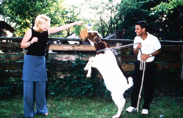 Carrot「Diana Staehly, Michael Dierks」:写真・画像(17)[壁紙.com]