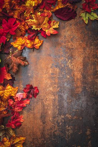 November「Autumn Decoration Background with Leafs」:スマホ壁紙(8)