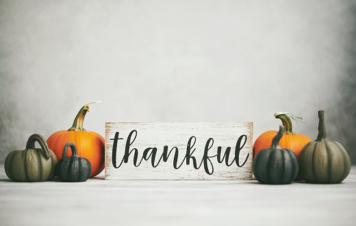 Thanksgiving - Holiday「Thanksgiving Fall Background with Assortment of Pumpkins and Thankful Sign」:スマホ壁紙(12)