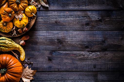 Squash - Vegetable「Thanksgiving day or autumn pumpkin holiday background」:スマホ壁紙(1)