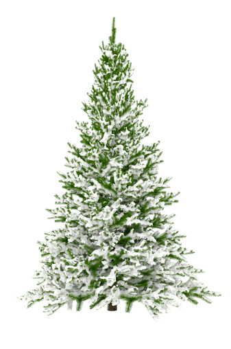 Intricacy「Christmas Tree Isolated on White with Snow (XXXL)」:スマホ壁紙(0)