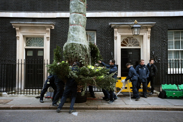 Tree「Downing Street Take Delivery Of Their Competition Winning Christmas Tree」:写真・画像(14)[壁紙.com]