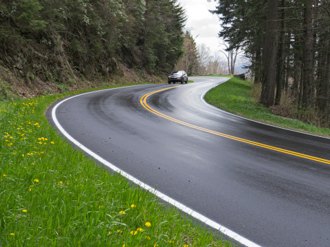 Hairpin Curve「Car on Road curves in the Smoky Mountains」:スマホ壁紙(16)