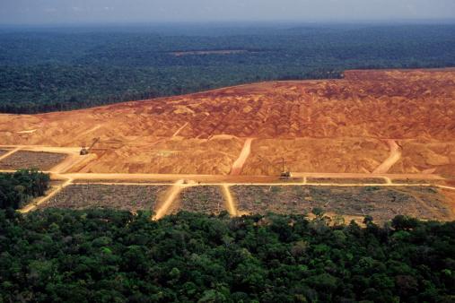 Construction Vehicle「Deforestation in the Amazon」:スマホ壁紙(5)