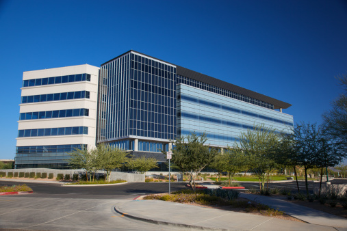 Tropical Tree「Modern Scottsdale Arizona Building for Medical Business」:スマホ壁紙(5)