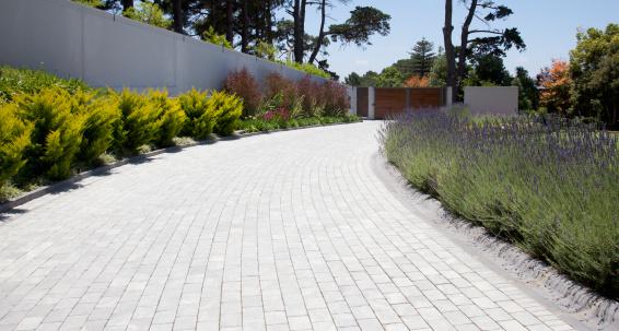 South Africa「Plants along cobblestone driveway」:スマホ壁紙(4)