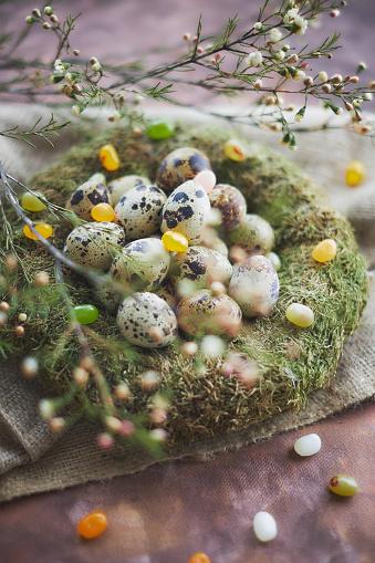 Gummi candy「Easter arrangement with quail eggs and moss」:スマホ壁紙(2)