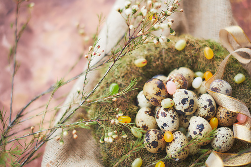 Gummi candy「Easter arrangement with quail eggs and moss」:スマホ壁紙(1)