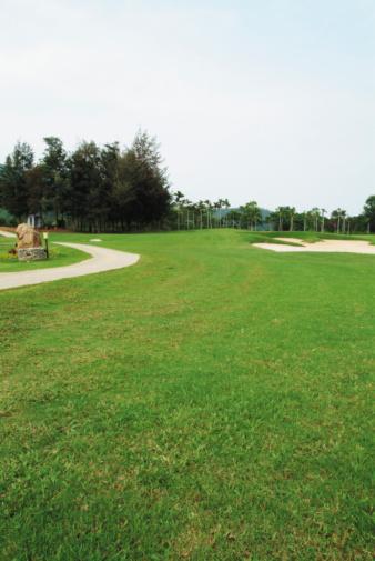 Sand Trap「Pathway on golf course」:スマホ壁紙(12)