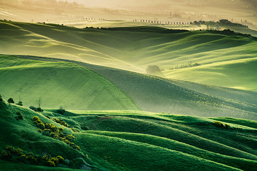 Val d'Orcia「Sunny landscape from Val d'Orcia, Tuscany, Italy」:スマホ壁紙(14)
