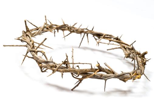 Crown - Headwear「Crown of Thorns on a light background」:スマホ壁紙(12)