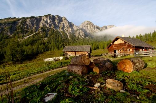 Log「Austria, Salzburg land, mountain pasture」:スマホ壁紙(14)