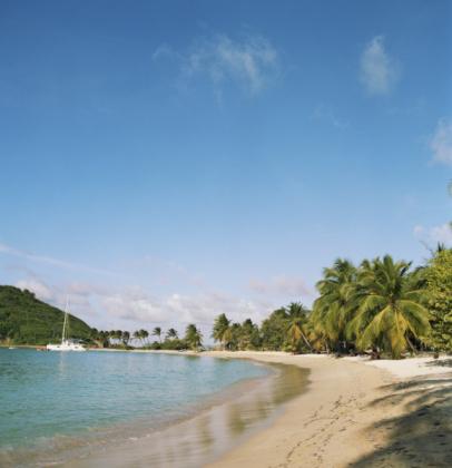 Salt Whistle Bay「Caribbean, St Vincent and Grenadines, Mayreau Island, Salt Whistle Bay」:スマホ壁紙(18)