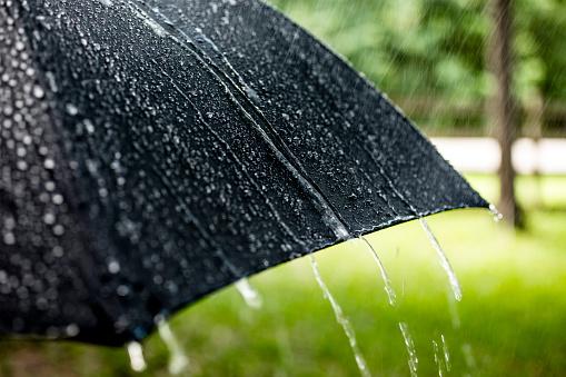 Meteorology「Rainy day. Raindrops falling on black umbrella outdoors. Spring, summer.」:スマホ壁紙(8)