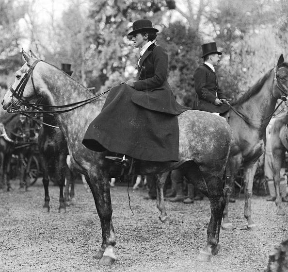 Horse「Lady Hunter」:写真・画像(19)[壁紙.com]