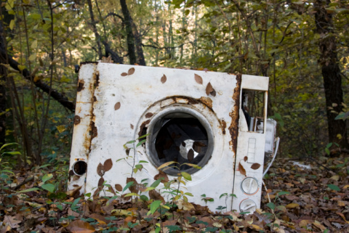 The Past「Abandoned Damaged Washing-machine in a Woods」:スマホ壁紙(4)