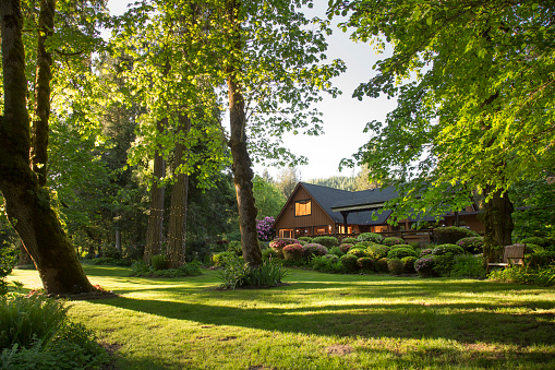 Log Cabin「Home with Lush Gardens」:スマホ壁紙(3)