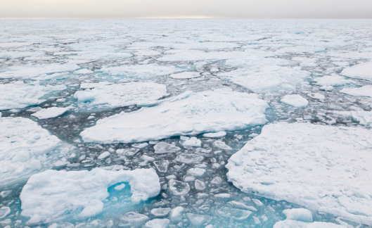 Pack Ice「Arctic Pack Ice」:スマホ壁紙(5)