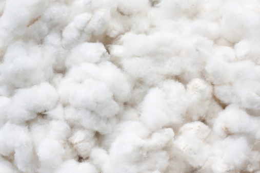 Dietary Fiber「Raw Cotton Crops」:スマホ壁紙(7)