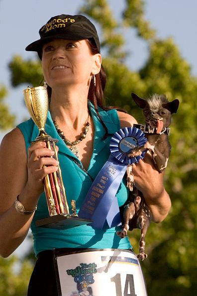 David Paul Morris「Furry Friends Vie For Title Of Worlds Ugliest Dog」:写真・画像(15)[壁紙.com]