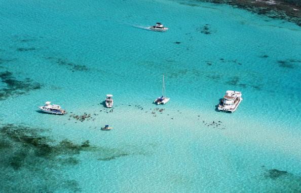 Shallow「Grand Cayman, Cayman Islands」:写真・画像(4)[壁紙.com]
