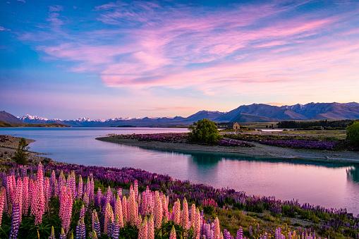South Island New Zealand「Lake Tekapo At Dawn, New Zealand South Island」:スマホ壁紙(4)