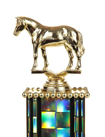 Horse「Horse Trophy」:スマホ壁紙(12)