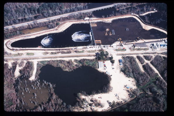 Ecosystem「Bioremediation Used In Toxic Waste Cleaning」:写真・画像(18)[壁紙.com]