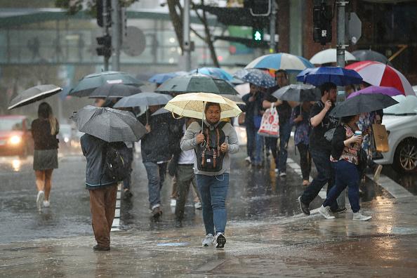 Sydney「Weather Warnings In Place As Rain Deluge Hits Sydney」:写真・画像(17)[壁紙.com]