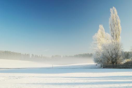 Tranquility「Germany, Baden Wuerttemberg, Villingen Schwenningen, View of rural winter scene」:スマホ壁紙(17)