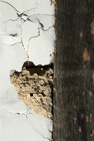 Vitality「Lime plastering disrepair on an old timber-framed building, Ipswich, United Kingdom」:写真・画像(19)[壁紙.com]