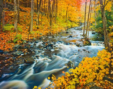 グリーン山脈「バーモントの秋」:スマホ壁紙(7)