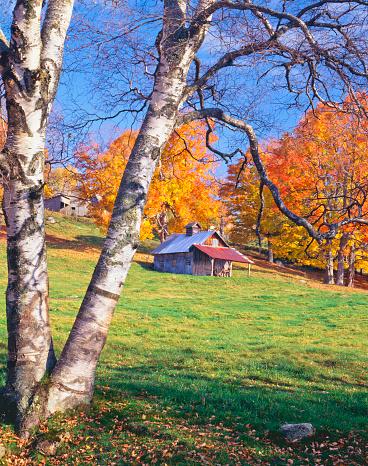 グリーン山脈「バーモントの秋」:スマホ壁紙(15)