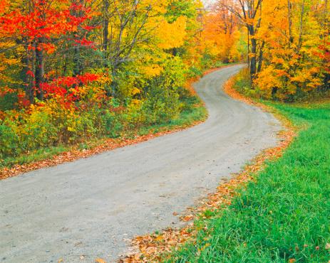 グリーン山脈「バーモントの秋」:スマホ壁紙(8)