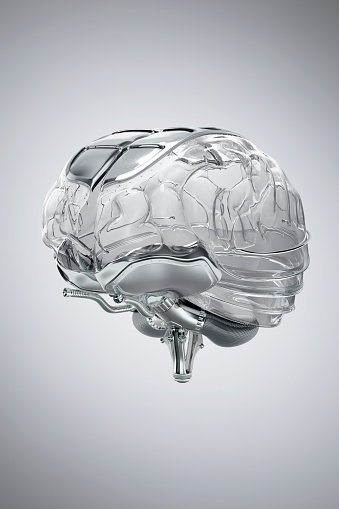 Human Internal Organ「Human Brain model made of glass」:スマホ壁紙(8)