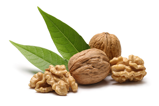 Nut - Food「Walnuts with leaves isolated on white background」:スマホ壁紙(9)