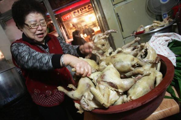 Chicken Meat「Avian Flu Scare In South Korea」:写真・画像(15)[壁紙.com]