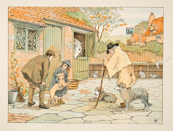 Domestic Animals「The Vet」:写真・画像(17)[壁紙.com]