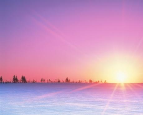 Hokkaido「A Snowy Field, the Morning Sun, and Roadside Trees. Hokkaido, Japan」:スマホ壁紙(12)