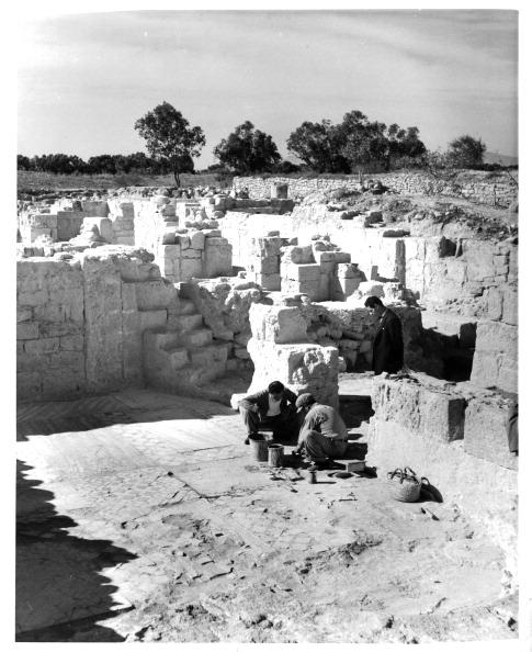 Republic Of Cyprus「GREAT BASILICA OF SALAMIS」:写真・画像(2)[壁紙.com]