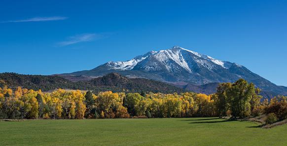 Aspen Tree「Snowy Rocky Mountains in the distance above a green field」:スマホ壁紙(4)
