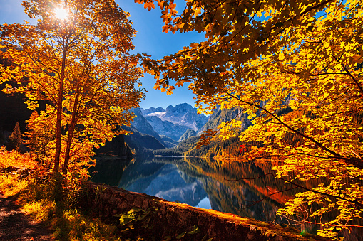 Salzkammergut「Autumn on lake Gosausee in Salzkammergut, Austria」:スマホ壁紙(5)