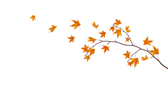 かえでの葉「秋のブランチ」:スマホ壁紙(10)
