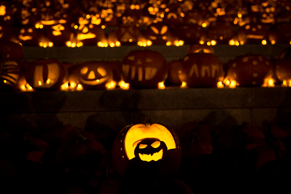 Halloween「Installation Of 3,000 Pumpkins Unveiled In London」:写真・画像(0)[壁紙.com]