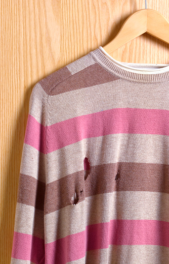 Sweater「Jumper with moth holes」:スマホ壁紙(14)